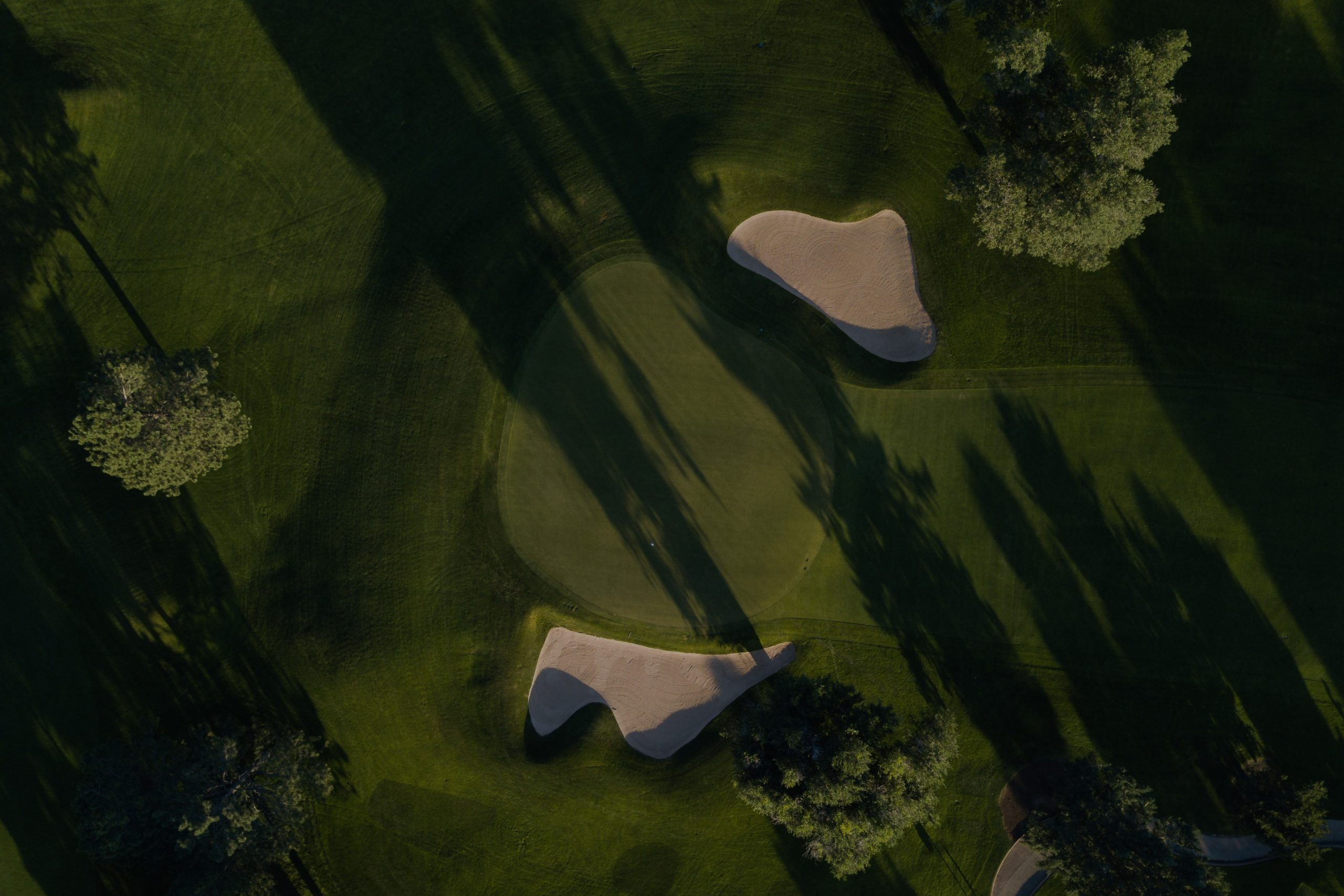 stegmann_golf_2